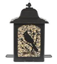 Birds and Berries Lantern